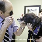 Dr. Bassett examines a patient