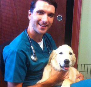 Can Chronic Kidney Disease Cause Urinary Incontinence In Dogs