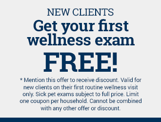 New clients get their first wellness exam free!