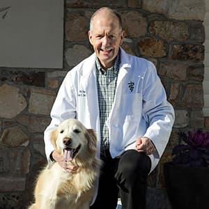 Dr Bassett